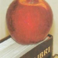 http://kirjasto.asiakkaat.sigmatic.fi/Ejpg/KK219a.jpg